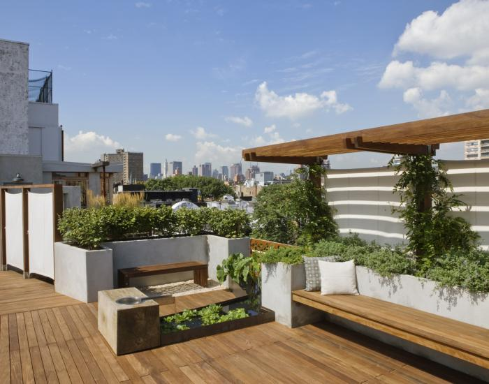 Roofgarden... on the top