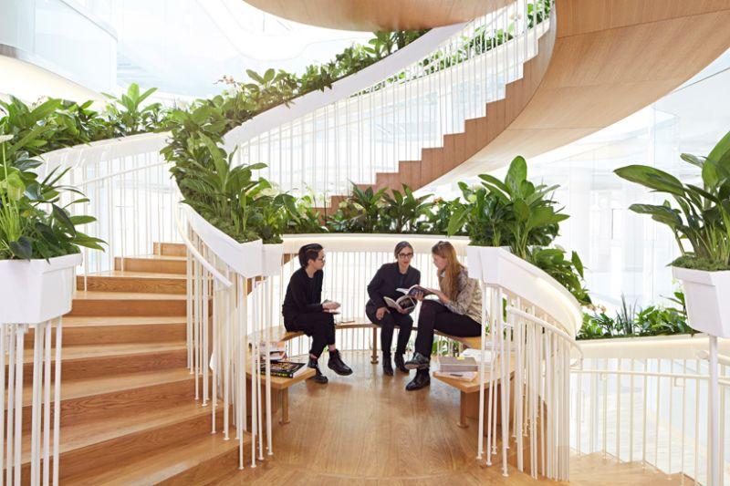 Μία «ζωντανή» eco-σκάλα